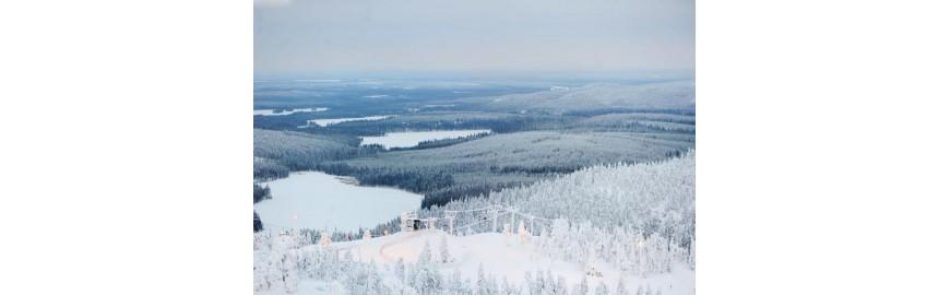 Climatizzatori nordic per climi rigidi